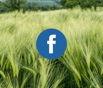 adc-facebook