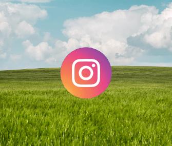 adc-instagram